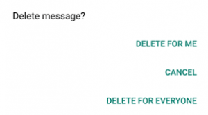delete whatsapp message after send or not send