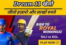 Dream 11 fantasy cricket