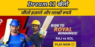 Dream 11 fantasy cricket