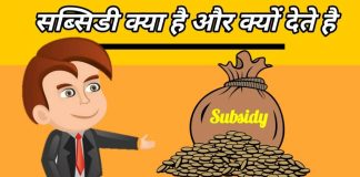 what is subsidy in hindi