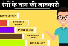 Colors Name hindi and English