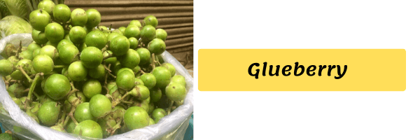 Vegetable Name with image glueberry