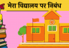 10 Line School Vidyalaya short essay hindi